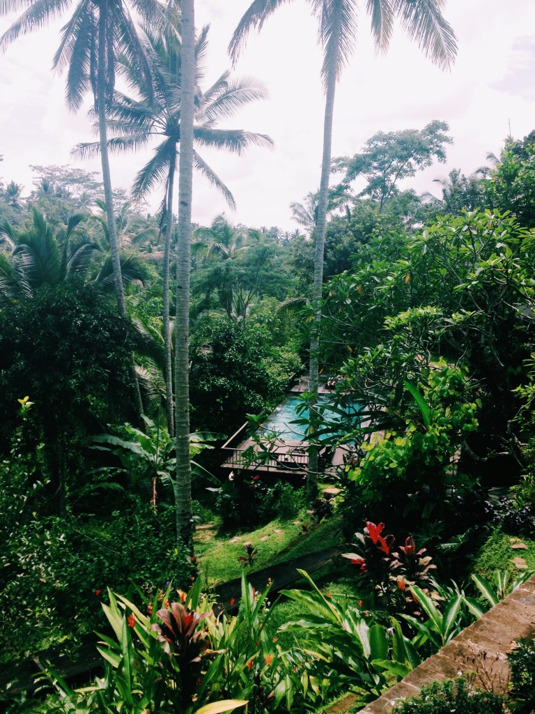 The view from the Kampung Cafe at The Kampung Resort, Ubud